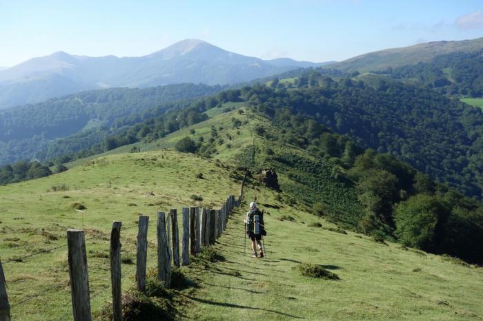 rebecca border fence day 5