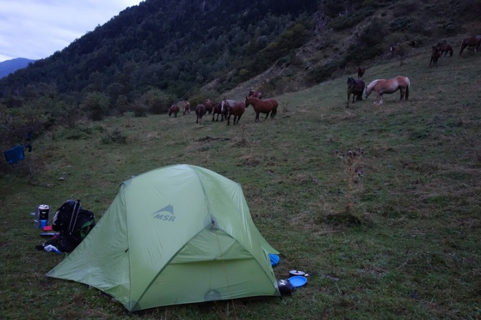 Tent and ponies at Nibros